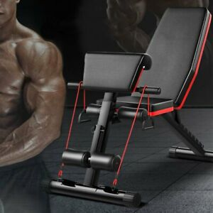 uk fitness weights bench multi gym dumbell workout leg