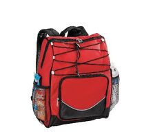 Outdoor Portable Cooler Insulated Backpack Soft Sided Poly Peva Liner Sports Bag