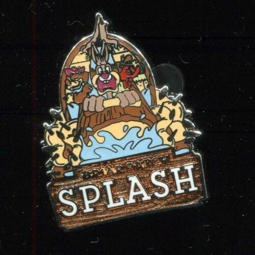 DLR Mascots Mystery Briar Patch Splash Disney Pin 116188