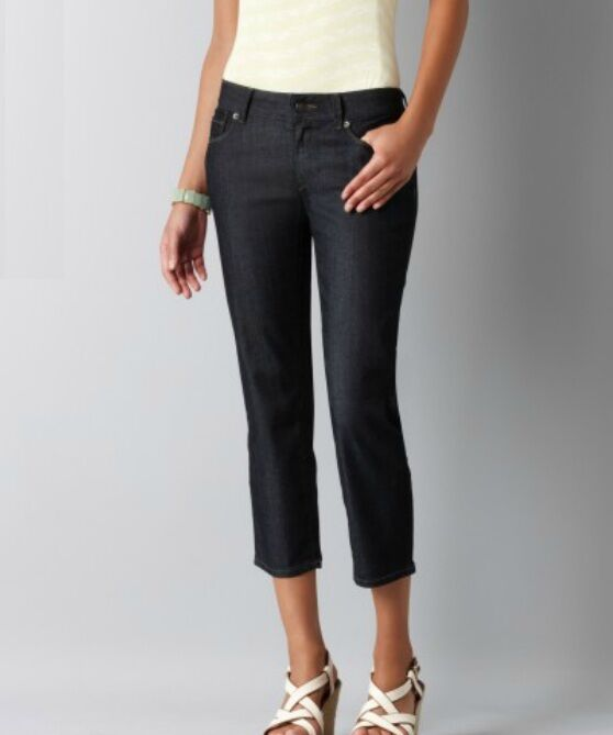 NWT Ann Taylor Loft Petites 2P Modern Cropped Jeans in Rinse Wash v