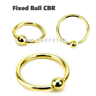 """2pcs 18g~1//4/"""" to 1//2/"""" Gold Plated 316L Captive Rings Ear Nose Cartilage Tragus"""