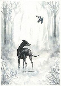Whippet-greyhound-Dog-Watercolour-Painting