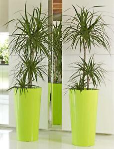2 Stück hohe Blumentöpfe mit Einsatz in Grün Euro3Plast Tuit Übertopf Vasen Topf