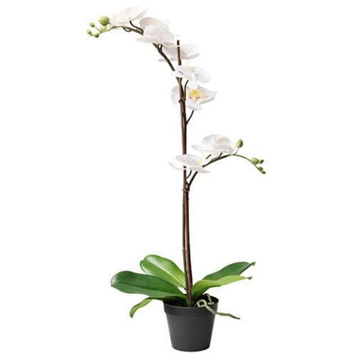 IKEA FEJKA Topfpflanze Kunstpflanze Kunstblume Orchidee weiß 65cm künstlich