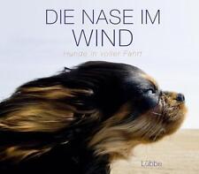 Ulrike Strerath-Bolz usb bücherbüro - Die Nase im Wind: Hunde in voller Fahrt