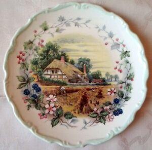 Royal-Albert-piatto-porcellana-inglese-Le-Quattro-Stagioni-Cottage-Garden-Autumn