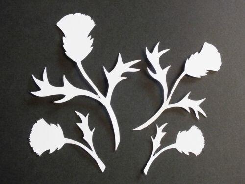 20 Highland Écossais Thistles en 4 Tailles Noir Ou Blanc Craft Die Cuts