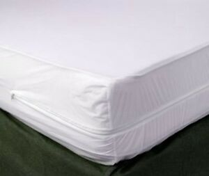 Quot Bed Protection Quot Bed Bug Allergy Mattress Protector Twin