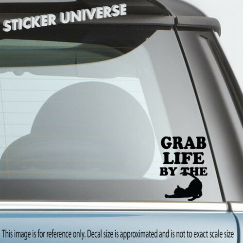 Grab Life By The Tail Pussy-Cat Funny Car Window Decal Bumper Sticker Trump 0521
