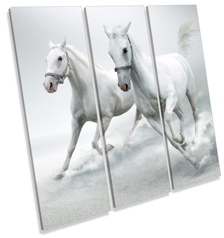 Weiß Horses Stallion TREBLE CANVAS Wand Kunst Square Bild Drucken