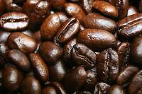 5 LBS Roasted SUMATRA MANDHELING Coffee Beans - Zecuppa Gourmet Whole Bean
