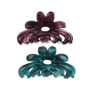 trouver le prix le plus bas 100% authentique handicaps structurels Détails sur 2pcs Griffe Pince à Cheveux Acrylique Couleur Bonbons pour Femme