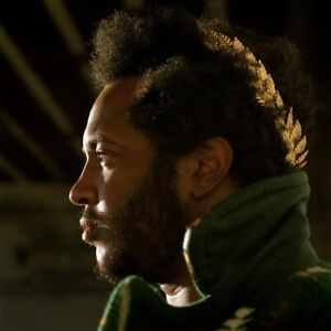 THUNDERCAT-APOCALYPSE-VINYL-MP3-2-VINYL-LP-NEW