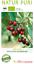 125-150cm Bio Kirschbaum /'Hedelfinger Riesenkirsche/' im 7,5L Topf gewachsen ca