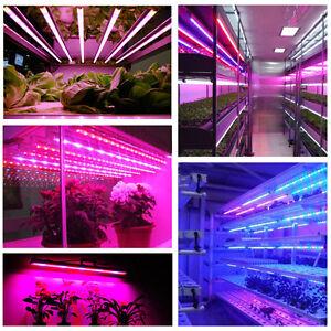 String Lamp Plant Grow Light R&Blue Aquarium Greenhouse Hydroponic eBay
