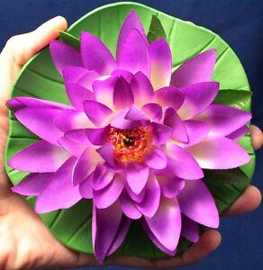 """1 Pièces. 5.5"""" Artificiel Lotus Fleur Pourpre Flotteur Home Spa Piscine Decor Tissu Mousse-afficher Le Titre D'origine Valeur Formidable"""