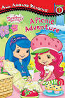 Strawberry Shortcake: A Picnic Adventure by Lisa Gallo (Paperback / softback)