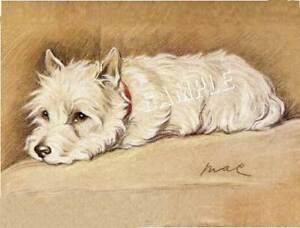 """""""LITTLE HIGHLAND LADDIE"""" WESTIE *CANVAS* DOG ART PRINT"""