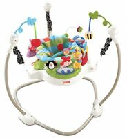 Fisher Price Discover 'n Grow Baby Jumperoo Play Bouncer | W9466