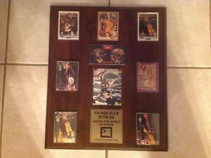 SHAQUILLE-O-039-NEAL-TAKING-THE-WORLD-BY-STORM-LIMITED-EDITION-PLAQUE-4482-150
