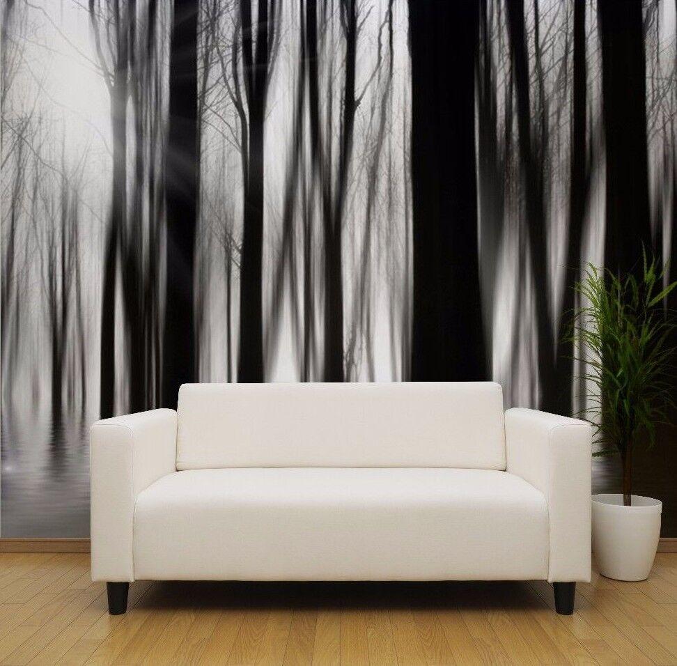 Schwarz und Weiß Hazy Wald Wälder Sunlight Strahlen Tapeten Wandbild (13402933)