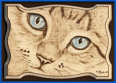 "Cat Portrait ACEO Ltd Ed Print ""Blue Eyed Boy"""