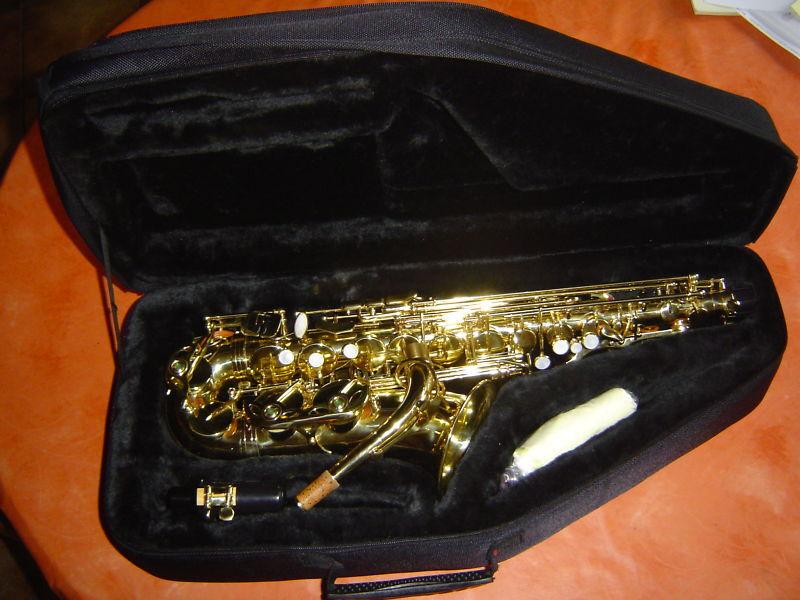 Es-Altsaxophon mit Gigbag Rucksackgarnitur, WS-AS 215 S  - NEU