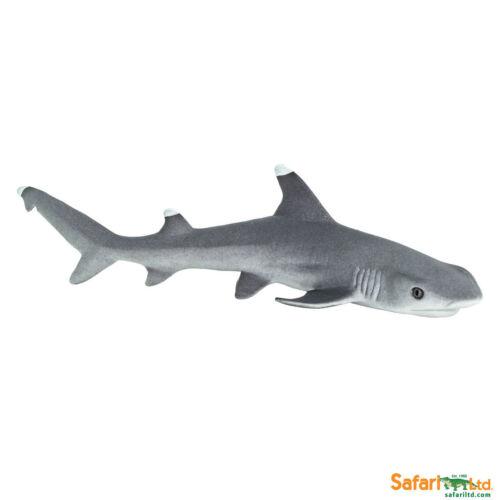 Safari LTD 100100 PUNTE BIANCO-riffhai 11 cm acqua animali