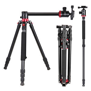 Neewer-Camera-Tripod-Monopod-with-Ball-Head-for-DSLR-Camera-Video-Camcorder