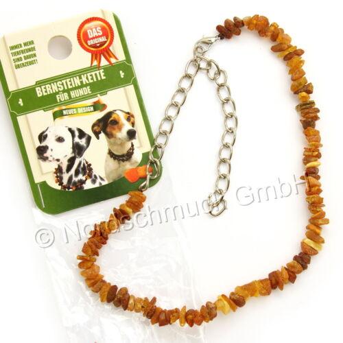 Bernsteinkette Hund Katze Bernstein roh Hundekette Halsband raw amber 22-68 cm
