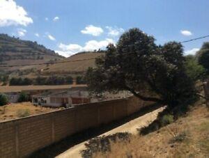 Hermoso terreno en Tenango del Valle.
