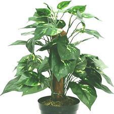 Artificial Potted Dieffenbachia Plant - House Office Decorative Plant