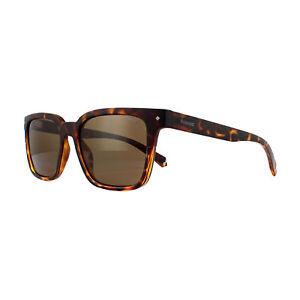 413a722ece3 Polaroid Sunglasses PLD 6044 S 086 SP Dark Havana Bronze Polarized ...