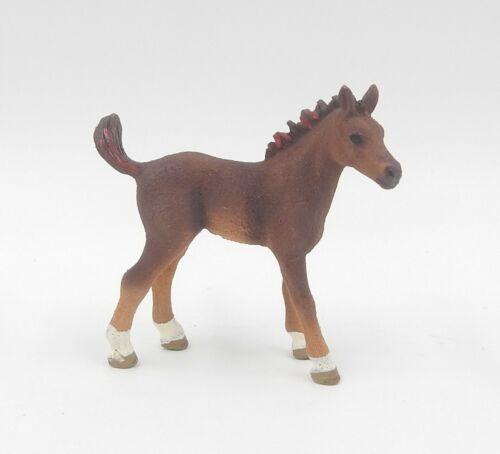 Schleich Horse Club caballo-Cayena como potros de heftbeilage nº 4-82989