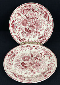 TST-Center-Bouquet-Red-Smooth-Rim-6-5-Bread-Dessert-Plates-Set-Of-2-Small-Chips