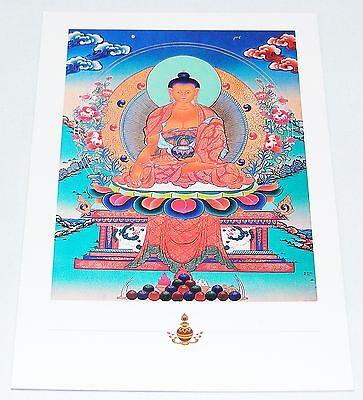Bello Selezione Meraviglioso Cartoline Juzu Divinità Dalai Lama Buddha- Prezzo Più Conveniente Dal Nostro Sito