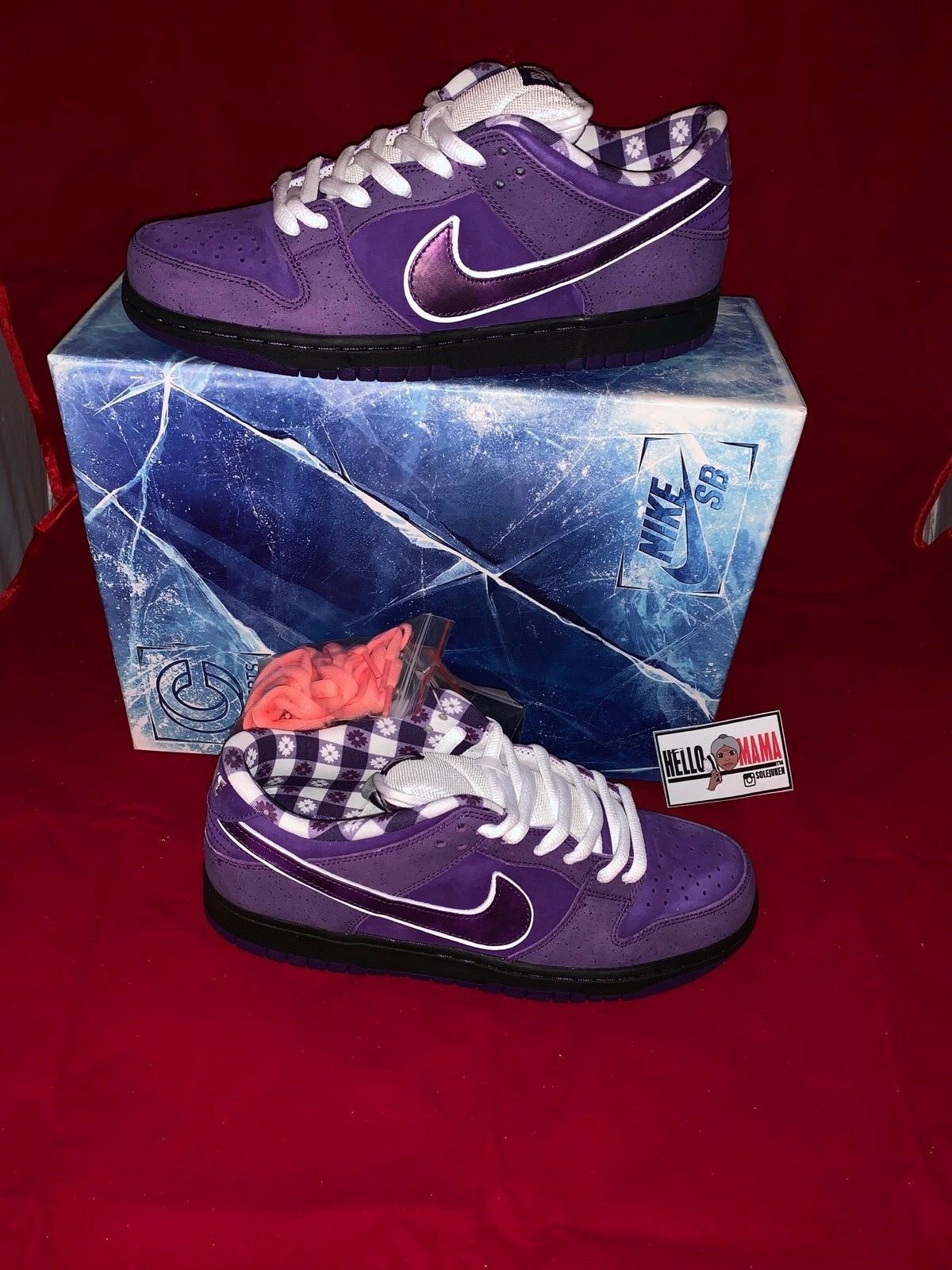 NIKE SB X CONCEPTS DUNK LOW PURPLE LOBSTER 2018 SPECIAL BOX - in hand