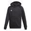 Adidas-Core-Enfants-Sweat-a-capuche-junior-Capuche-Sweat-shirt-Garcon-Sweat-Polaire-a-Capuche-Haut miniature 3