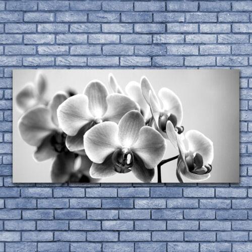 Acrylglasbilder Wandbilder Druck 140x70 Blumen Pflanzen