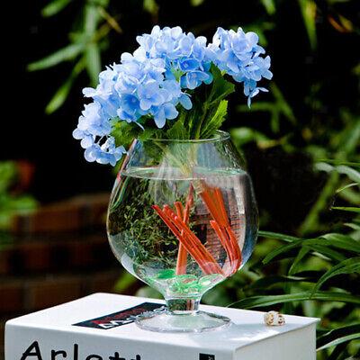 Wine Glass Shaped Transparent Glass Bottle Vase for Plants Flower Decoration