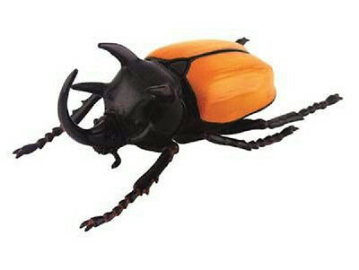 NEW 4D Master Puzzle Insect TOY / FIGURE FIVE HORN BEETLE