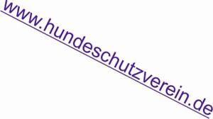 Top-Domain-Verkauf-hundeschutzverein-de