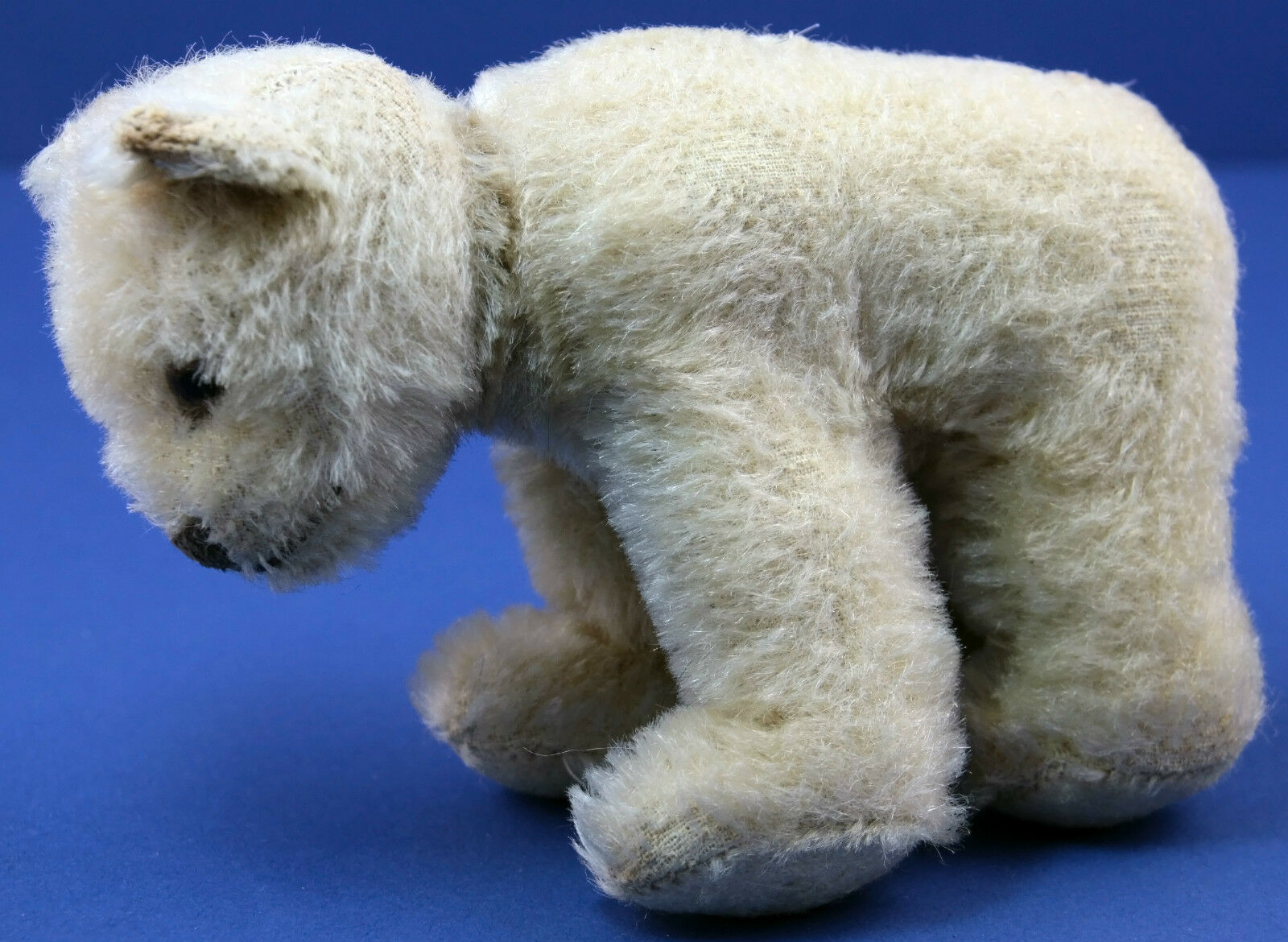 Original US Zone Steiff Polar Bear  1312.0