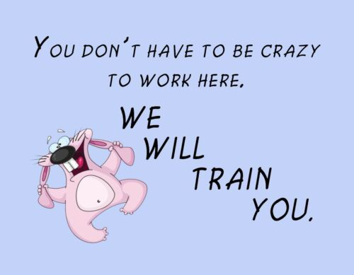 METAL MAGNET Office Humor Rabbit Don/'t Be Crazy Work Here We Train You MAGNET