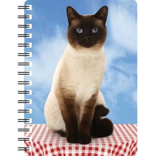 Kitten 3D notebook ideal Christmas stocking filler