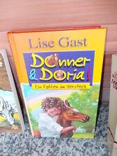 Donner & Doria: Ein Fohlen im Versteck, von Lise Gast, aus dem Gondolino Verlag