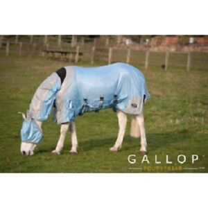 Combo Fly Rug From Gallop Equestrian