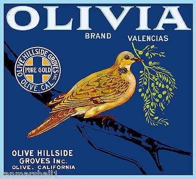 Olive California Olivia Bird Branch Orange Citrus Fruit Crate Label Art Print