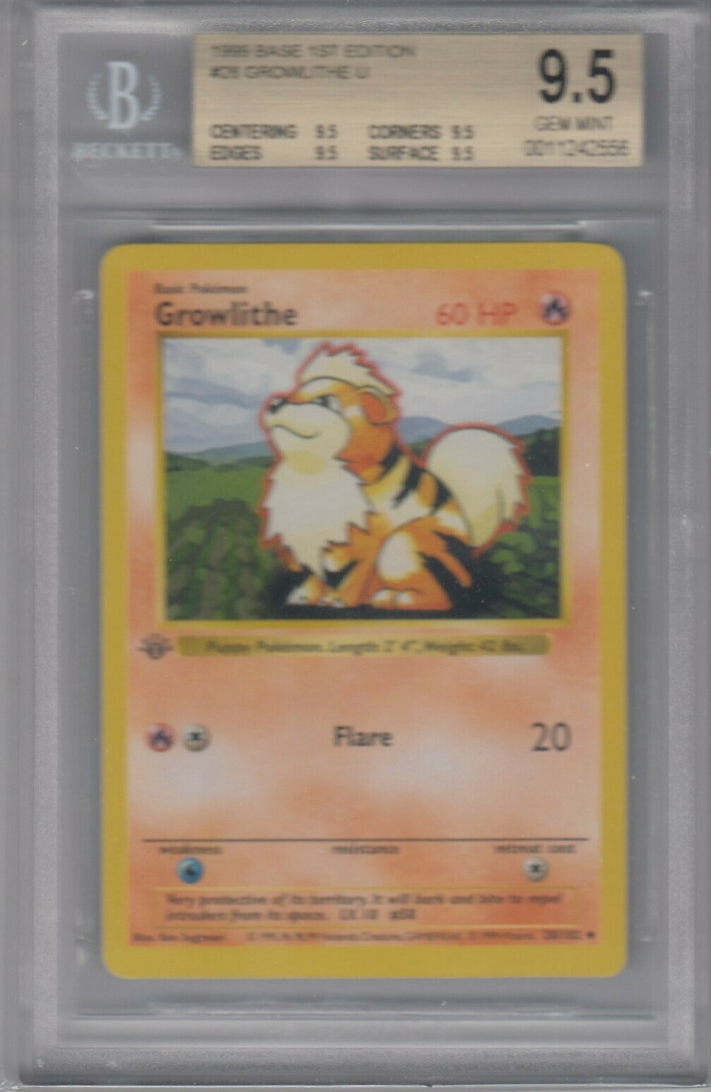 Growlithe 28   102 Pocket de base para duendes, primera edición  sin sombra  BGS 9.5 gemas de menta