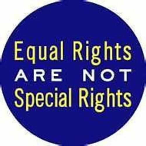 Equal Rights are NOT Special Rights Gay LGBT Button Pride